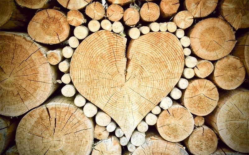 les, smrela, ostrešje, nadstrešek